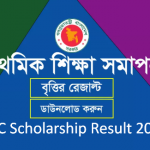 Primary Scholarship Result 2019 will Publish on March First Week